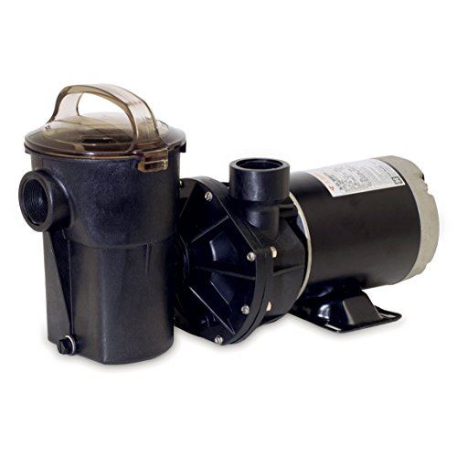 Hayward SP1580 PowerFlo LX 1 HP Above-Ground Swimming Pool Pump