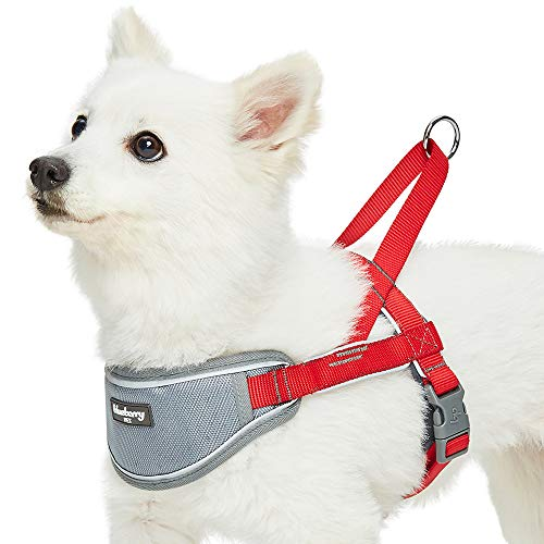 Blueberry Pet 2019/2020 New 8 Colors Soft & Comfy 3M Reflective Strips Padded Dog Harness Vest, Chest Girth 16.5