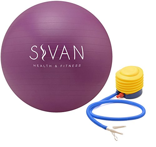 Sivan Health and Fitness Anti-Burst Stability Gym Ball, and Pump (65cm, Purple)