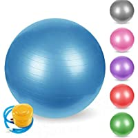 Absales 75Cm Rubber Gym Ball With Foot Pump (Multicolour)