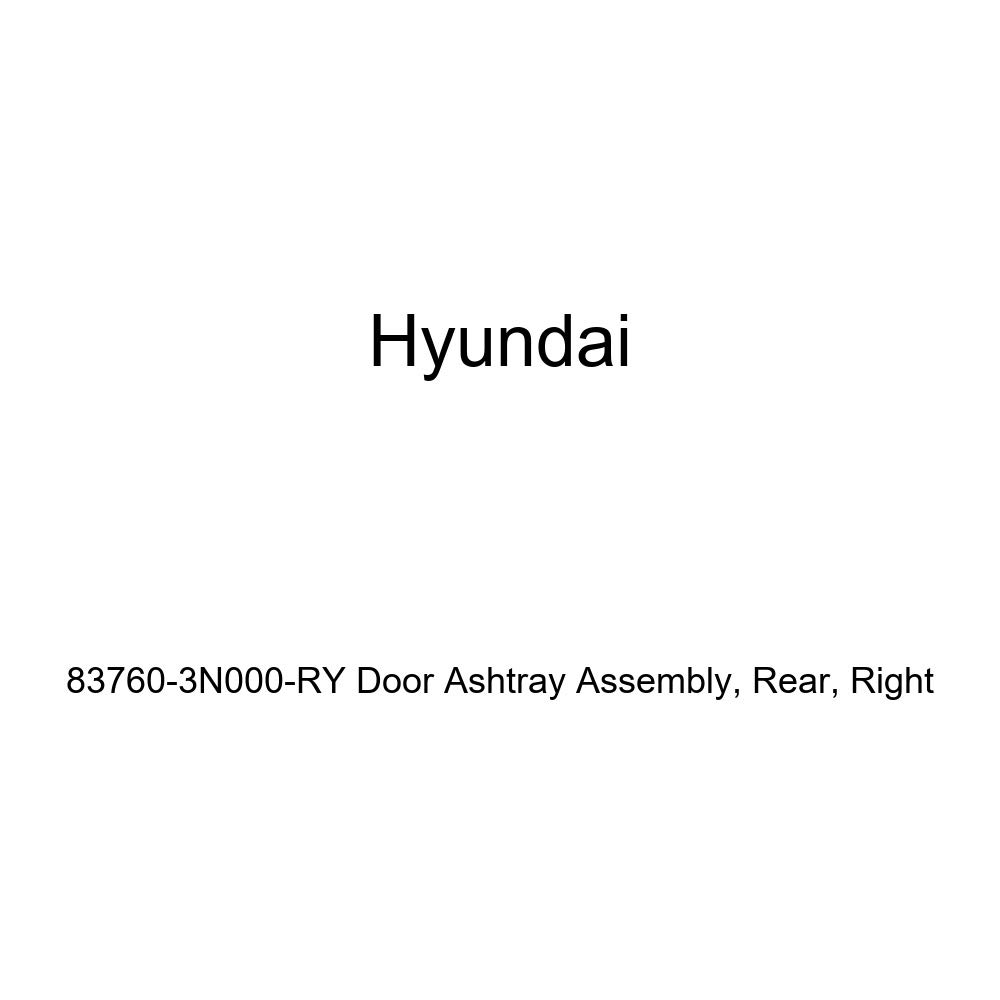 Right Rear Genuine Hyundai 83760-3N000-RY Door Ashtray Assembly