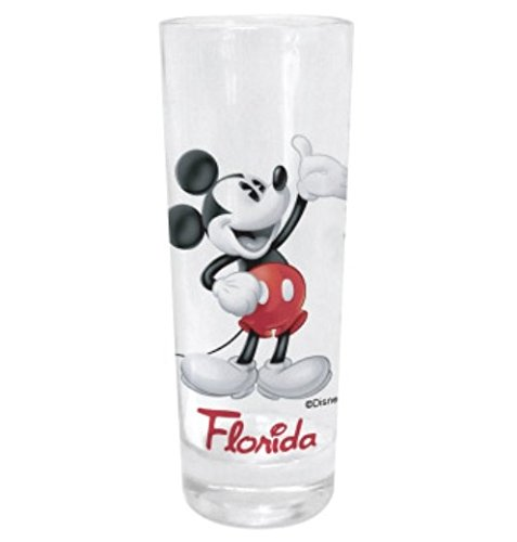 Disney Mickey Tonal Collector Glass (Florida Namedrop)