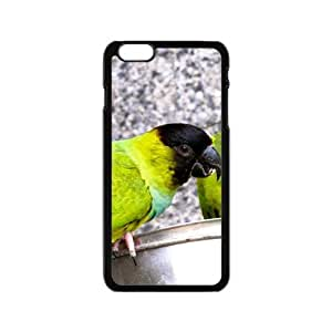 Lovely Parrot Hight Quality Plastic Case for Iphone 6