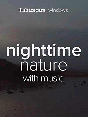 (Nighttime Nature with music)