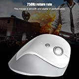 Vertical Wireless Mouse,2.4G Working