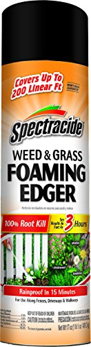 Spectracide Weed & Grass Foaming Edger, Aerosol, 17-Ounce, 1