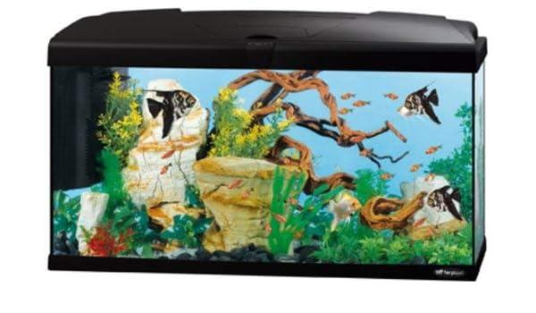 Ferplast Acuario Capri 50, 52 x 27 x 36 cm, 40 litros, negro: Amazon.es: Productos para mascotas