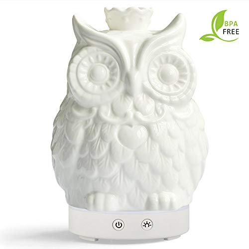 Oil Diffuser 120ml Cool Mist Humidifier -14 Color LED Nihgt lamps - Crafts Ornaments All in One Upgrade Whisper-Quiet Operation Ultrasonic Ceramics Owl Humidifiers (White base) ()