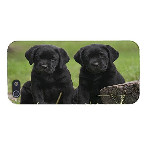 brand new 26c89 dd934 Black Lab Labrador Puppies Dog Design Cover Case iPhone 4/4S NEW