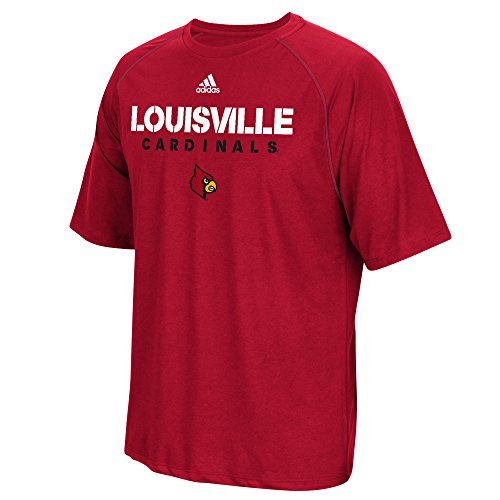 NCAA Louisville Cardinals Adult Men 2017 Spring Game Sideline S/Climalite Tee,Large,Power Red (Adidas Shirt Sideline Polo)