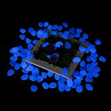 300Pcs Glow in the Dark Pebbles Tvird Glow Stones Glow Pebbles for Garden Walkway, Flowerpot, Fish Tank (Blue)