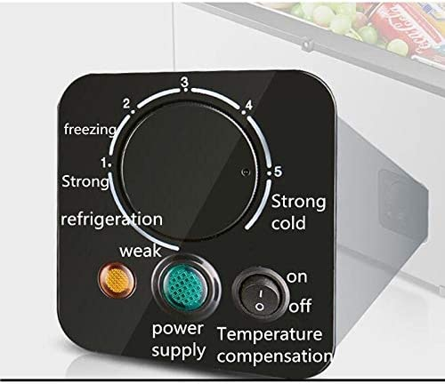 Weiaxminibx 18L車車冷蔵庫コンプレッサー冷凍ミニ冷蔵庫冷凍ミニクーラー12V 24Vを使用することができフリーズ