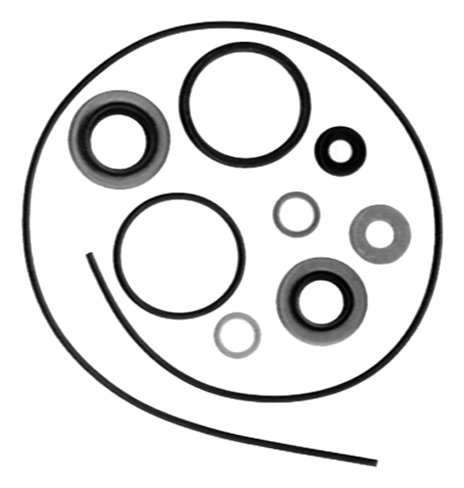 Sierra International 18-2684 Marine Lower Unit Seal Kit for Johnson/Evinrude Outboard - Seal Johnson Evinrude