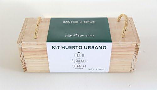 Kit de Huerto Urbano: Perejil, Albahaca y Cilantro: Amazon.es: Jardín