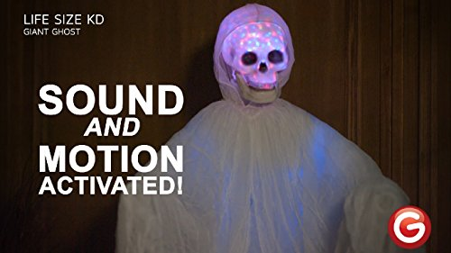 Gemmy Halloween Life-Size Animated LED Ghost -