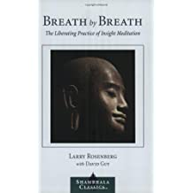 Amazon larry rosenberg books biography blog audiobooks breath by breath the liberating practice of insight meditation shambhala classics fandeluxe Images