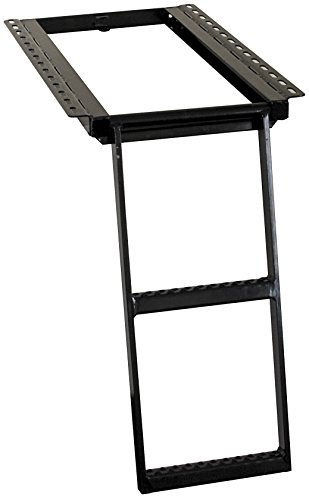 Buyers Products 5232000 Black 2-Rung Retractable Truck (Retractable Step)