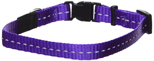 extra small neon dog collar - 2