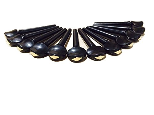 Set of 12 Indian Ebonywood Pegs for Oud - Gold Grade by ADINATH MUSIC