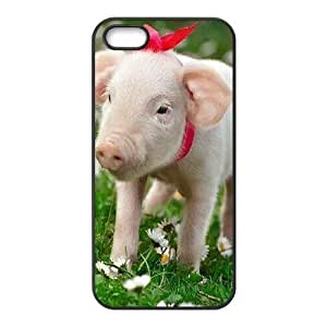 Cool Painting Pig Use Your Own Image Phone Case for Iphone 5,5S,customized case cover case698023