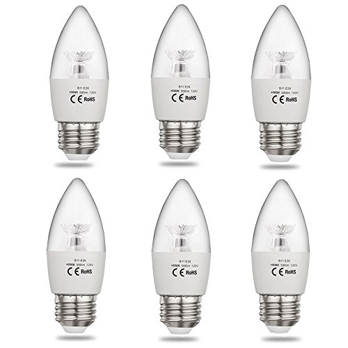 Decorative Outdoor Light Bulbs in Florida - 5