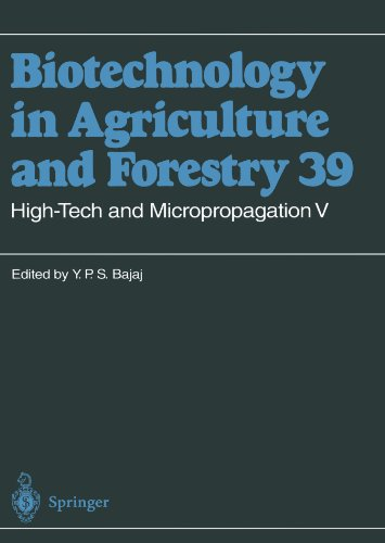 High-Tech and Micropropagation V (Biotechnology in Agriculture and Forestry)