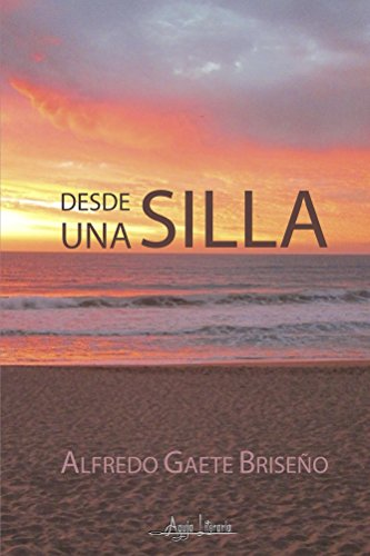 Desde una silla (Spanish Edition) by [Gaete Briseño, Alfredo]