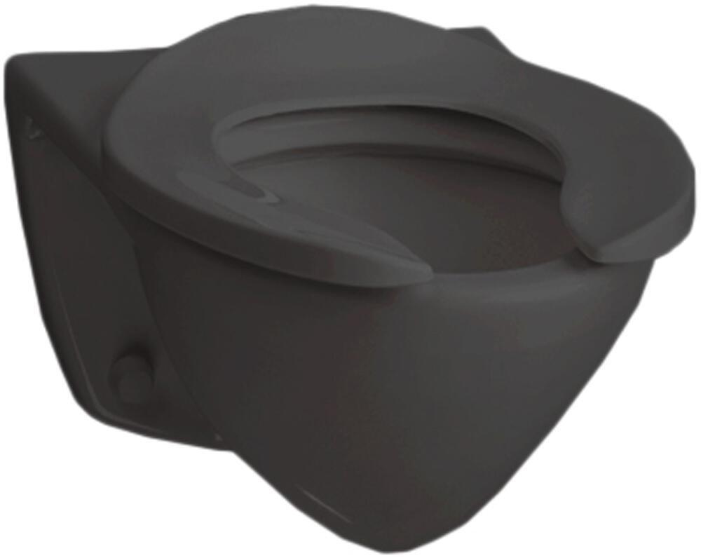 Toto CT708E-51 Commercial Flushometer High Efficiency 1.28 GPF, Elongated Toilet Bowl, Ebony