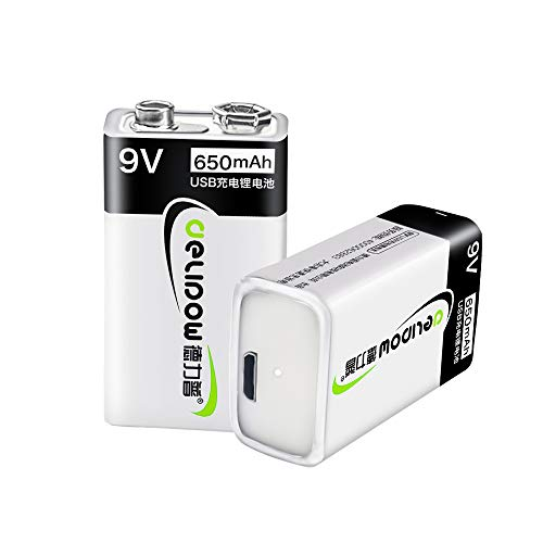 Delipow 9V USB Rechargeable Batteries, High Capacity 650mAh Li-ion Rechargeable Battery with 2 USB Charging Cables - 1.5h Quick Charge 2-Pack