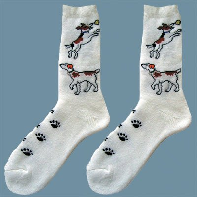 intrepid-international-kids-jack-russell-socks-size-7-9