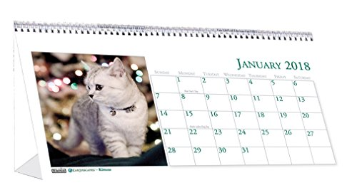 House of Doolittle 2018 Monthly Desktop Tent Calendar, Kittens, 8.5 x 4.5 Inches, January - December (HOD3669-18)