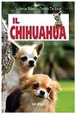 Image de Il chihuahua