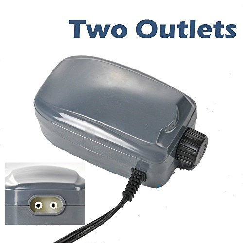 48 GPH Aquarium Air Pump Two Outlets Adjustable Upto 120 Gallon Free Check Valves by Sun Microsystems by SUNSUN