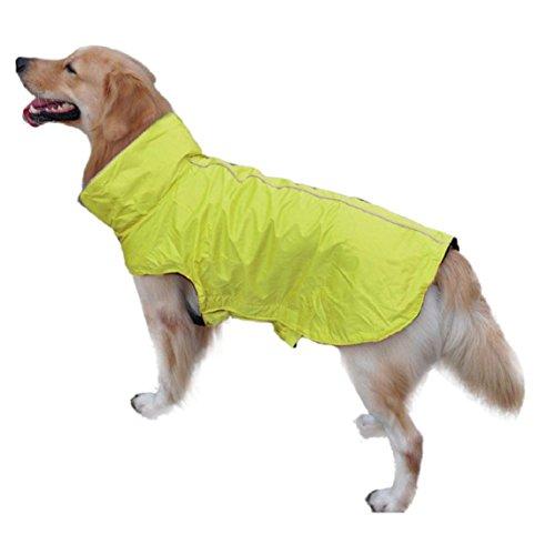 Manteau De Veste Domestique Chien Protection Étanche Jaune Animal Amison Imperméable Coloré xPazwz