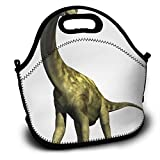 The Camarasaurus Dinosaur Lunch Bag, Insulated Neoprene Lunch Tote Bag, Food Container Cooler Warm Pouch for Adults Children Students Worker