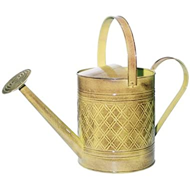 ROBERT ALLEN MPT01501 Wexley Metal Watering Can, Chamomile Yellow