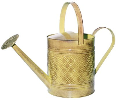Robert Allen MPT011501 Wexley Metal Watering Can, 2 Gallon, Chamomile