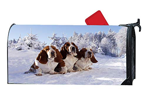 Trio Snow Sunshine Bassets Puppies Decorative Magnetic Mailbox Cover Home Outdoor Vinyl Standard Mailbox Wrap with Animals Design 6.5 x 19 Inches ()
