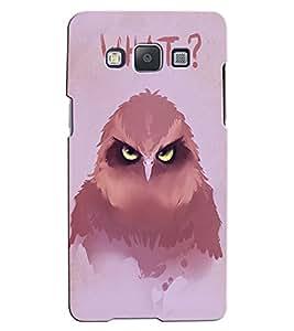 Citydreamz Owl\Wild\Birds Hard Polycarbonate Designer Back Case Cover For Samsung Galaxy J5