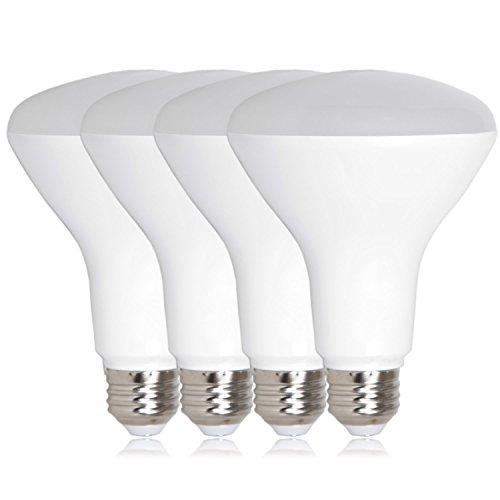 Energy Efficient Indoor Flood Light Bulbs