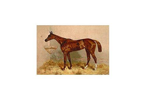 - Buyenlarge Emblem, Steeplechase Mare Print (Canvas 24x36)