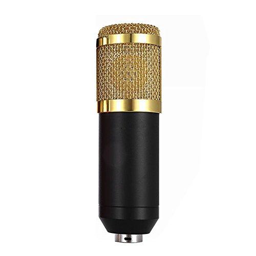 Andoer Condenser Microphone High Sensitivity Recording Studio Professional Recording Equipment Black by Andoer