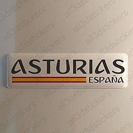 Pegatina Asturias España Resina, Pegatina Relieve 3D Bandera ...