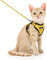 Dooradar Cat Harness and Leash for Walking, Escape Proof Pet Harness, Adjustable Soft Mesh Vest Jacket with Reflective Strips & 1 Metal Leash Ring, Breathable Safety and Easy Control for Small Cat…