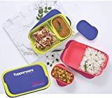 Tupperware Plastic Lunch Box, 10-inch, Multicolour (Set of 2) - 500 ml Medium