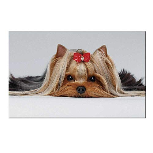 YOLIYANA Yorkie Durable Door Mat,Lying Yorkshire Terrier with Cute Ribbon Yorkie Love Portrait of a Dog Decorative for Home Office,19.6