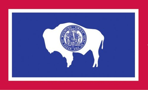 Valley Forge, Wyoming State Flag, Nylon, 3'x5', 100% Made in USA, Canvas Header, Heavy-Duty Brass Grommets by Valley Forge