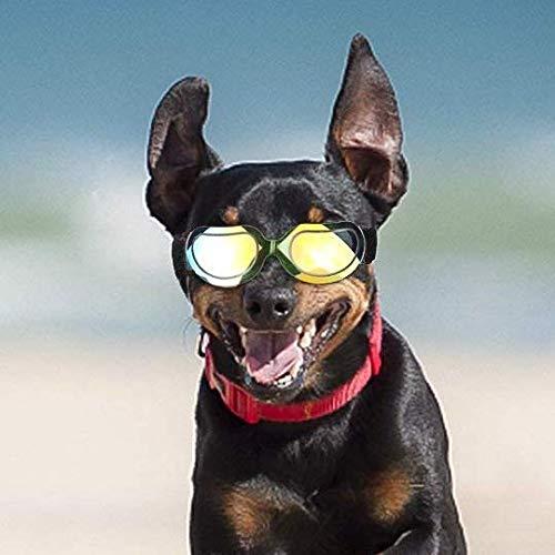 c7b30fa8348ab8 Chiens Lunettes de natation pour animal domestique Moto Lunettes de ...