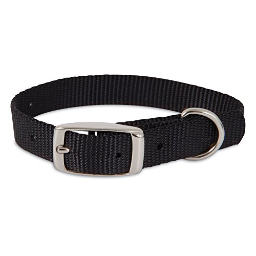 Petmate Aspen PET Products 15360 Nylon Dog Collar, 5/8 by 12-Inch, Black