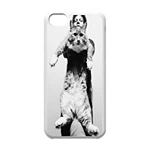 T-TGL(RQ) Customized New Printed Phone Case for Iphone 5C diy Ed Sheeran case
